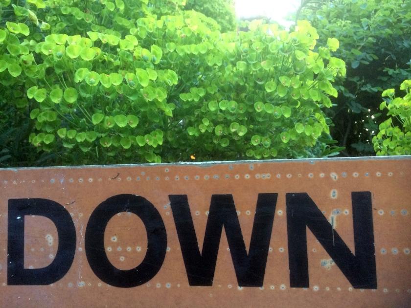 023 - Down
