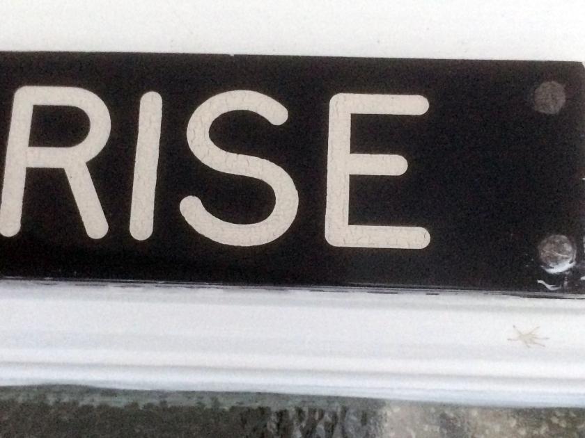 024 - Rise