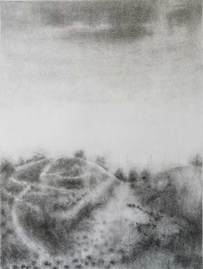 039 - TR - Crowding the solitude (28x21cm) pencil and graphite on paper.jpg