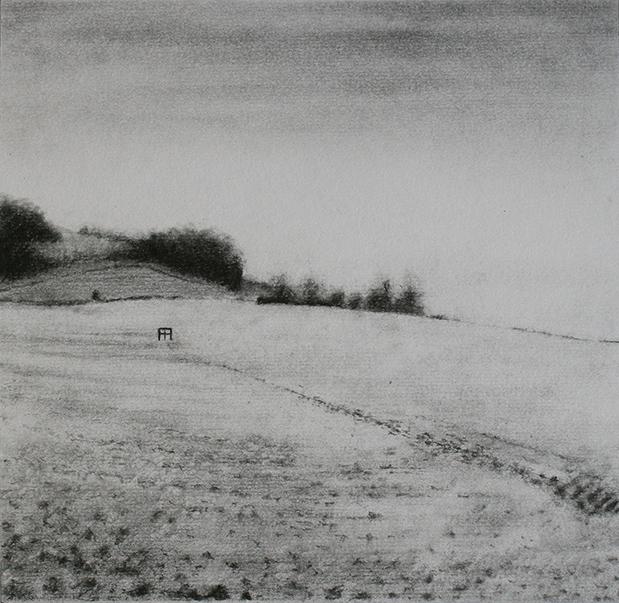042 - TR - Flint (42x42cm) pencil and graphite on paper.jpg